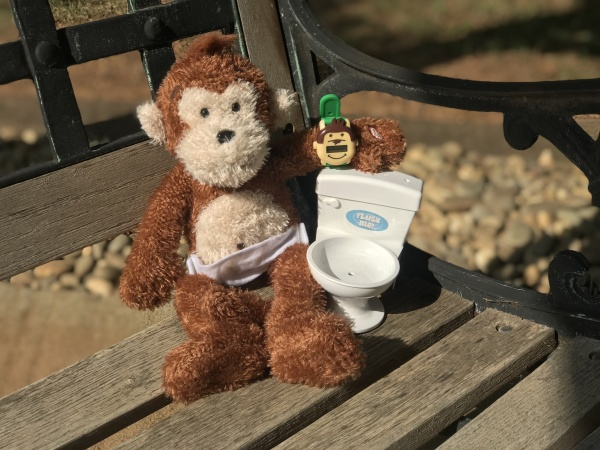 Potty Monkey with flushing-sounds toilet and Potty Monkey Watch for potty training.