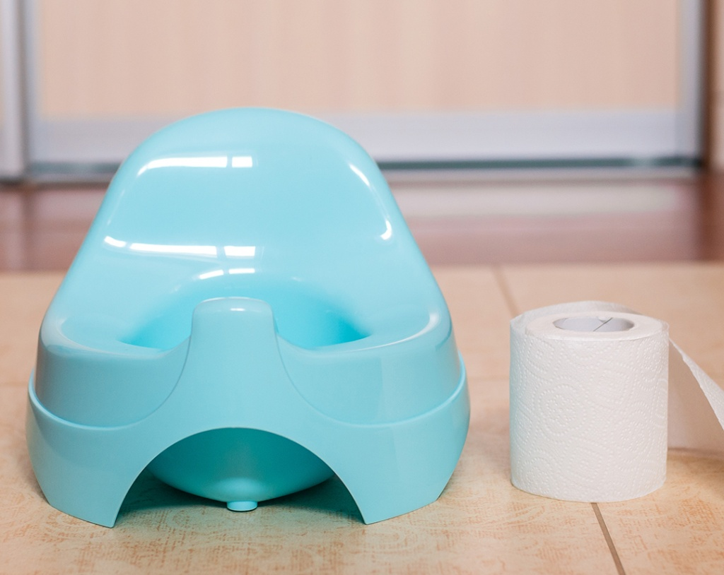 Child's potty seat and roll of toilet paper for potty training.